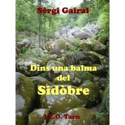 Dins una balma del Sidòbre - Sèrgi Gairal