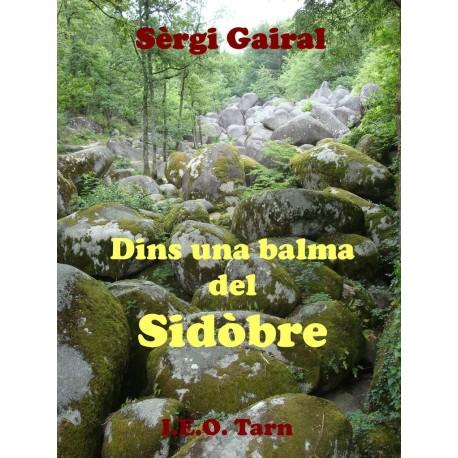 Dins una balma del Sidòbre - Sèrgi Gairal - I.E.O. Tarn éditions