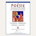 Poésie d'Amour et de Guerre du Moyen-âge occitan - Michel GAYRAUD (DVD)