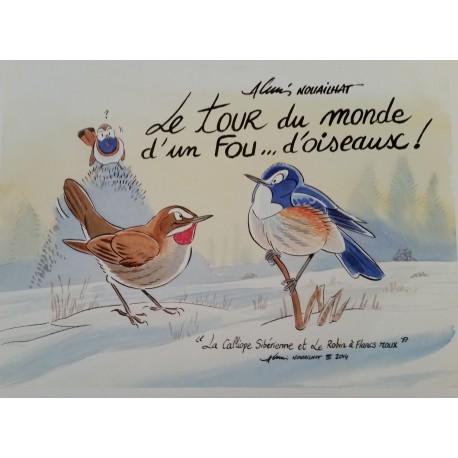 Le tour du monde d'un Fou... d'oiseaux ! - Alexis Nouailhat