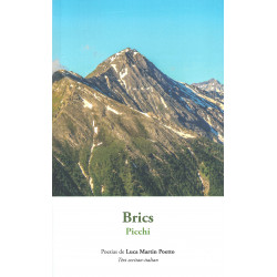 Brics - Picchi - Poesias de Luca Martin Poetto