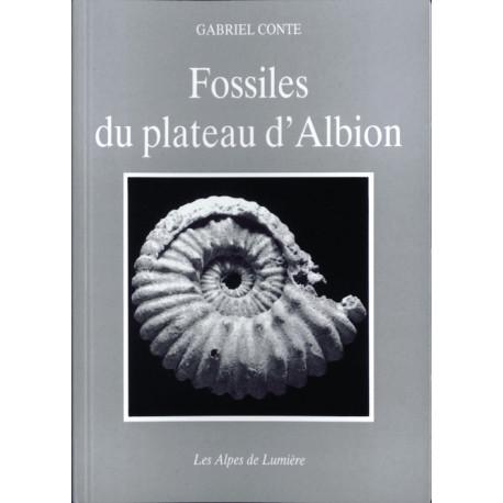 Fossiles du plateau d'Albion - Gabriel CONTE - Les Alpes de lumière n°99